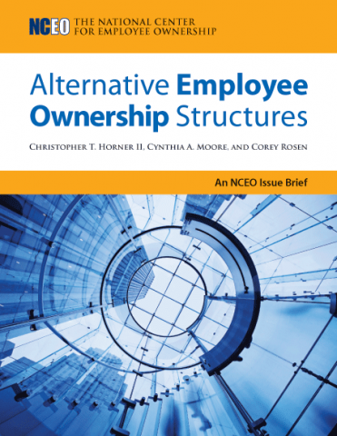 Product image for: Alternative Employee Ownership Structures