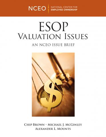 Product image for: ESOP Valuation Issues